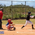 Baseball Bermuda, May 13 2017-4