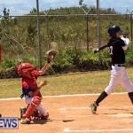 Baseball Bermuda, May 13 2017-6