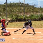 Baseball Bermuda, May 13 2017-7