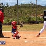 Baseball Bermuda, May 13 2017-8