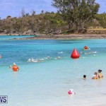 Clarien Iron Kids Triathlon Bermuda, May 20 2017-2