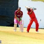 Cricket Twenty20 Bermuda April 30 2017 (10)