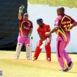 Cricket Twenty20 Bermuda April 30 2017 (13)