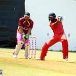 Cricket Twenty20 Bermuda April 30 2017 (15)