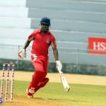 Cricket Twenty20 Bermuda April 30 2017 (5)