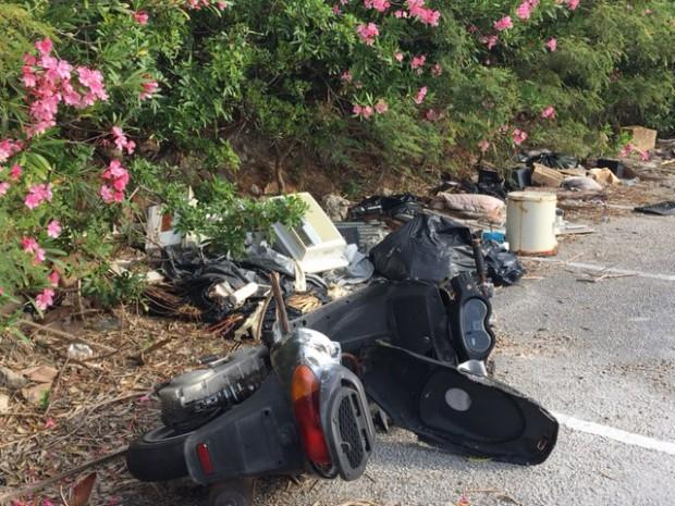 Dumping May 16 2017 (2)