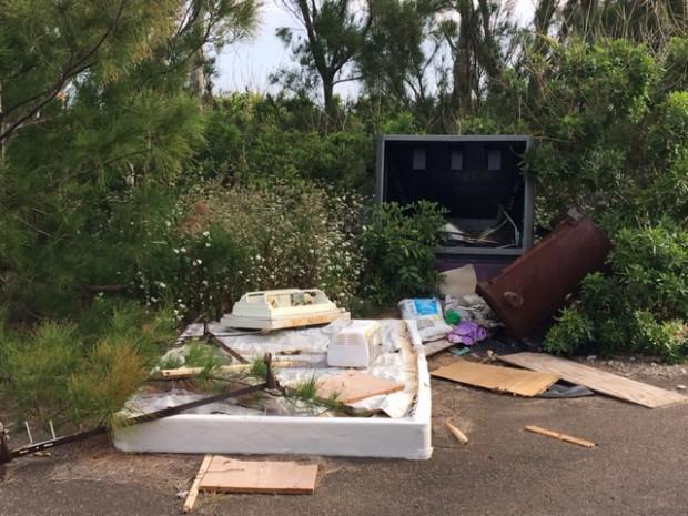 Dumping May 16 2017 (3)