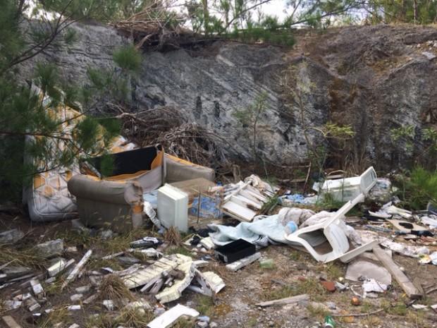 Dumping May 16 2017 (5)