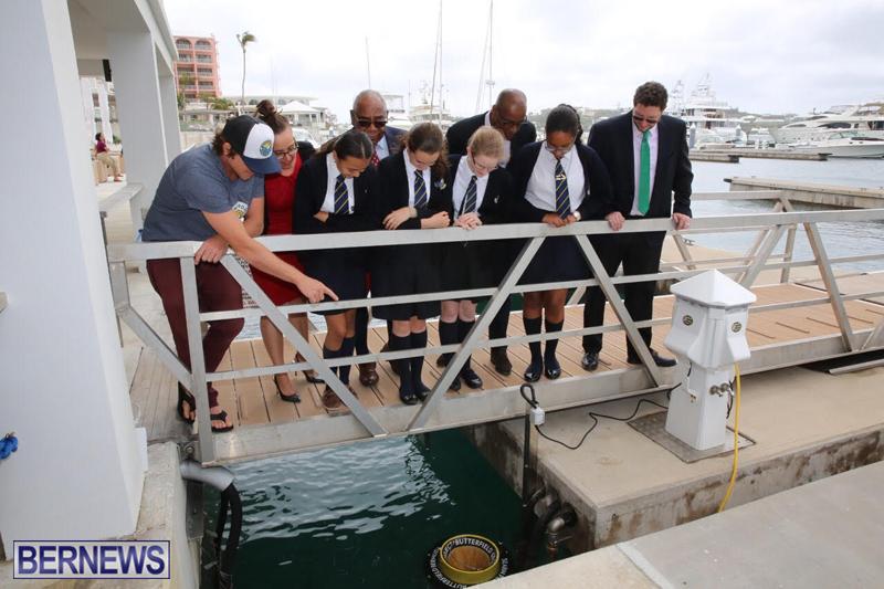 Seabin Bermuda May 12 2017 (4)