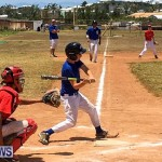 YAO Baseball Bermuda, May 20 2017-17