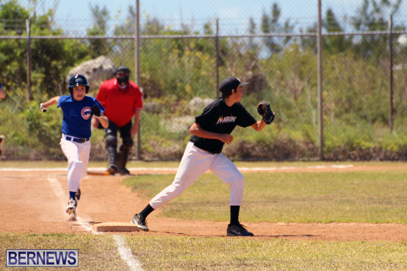 baseball-bermuda-May-16-2017-12