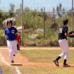 baseball bermuda May 16 2017 (13)