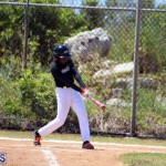baseball bermuda May 16 2017 (15)