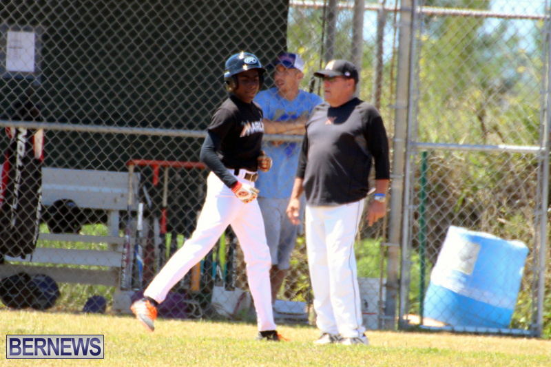 baseball-bermuda-May-16-2017-17
