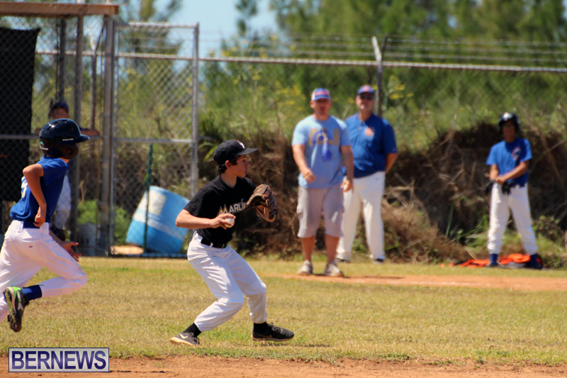 baseball-bermuda-May-16-2017-5