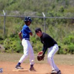 baseball bermuda May 16 2017 (6)