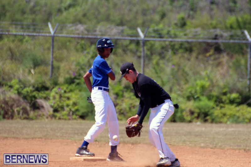 baseball-bermuda-May-16-2017-6