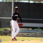 baseball bermuda May 16 2017 (7)