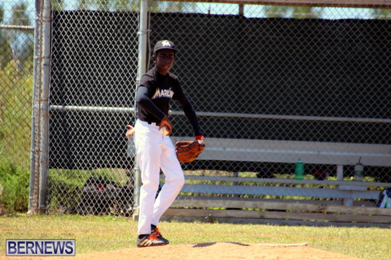 baseball-bermuda-May-16-2017-7