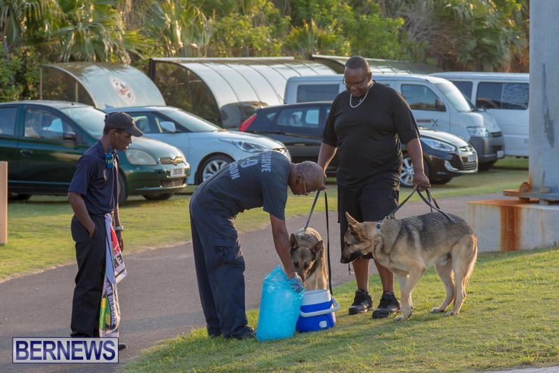 5-Star-Friday-Bermuda-Heroes-Weekend-June-16-2017-3