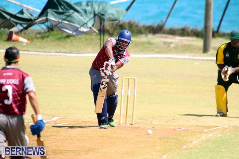BCB-Twenty20-Cricket-Bermuda-May-28-2017-11