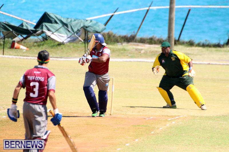 BCB-Twenty20-Cricket-Bermuda-May-28-2017-12