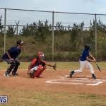 Baseball Bermuda, June 11 2017 (1)