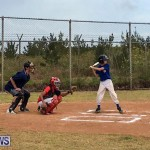 Baseball Bermuda, June 11 2017 (3)