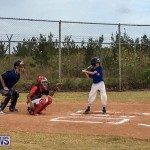 Baseball Bermuda, June 11 2017 (4)