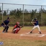 Baseball Bermuda, June 11 2017 (5)