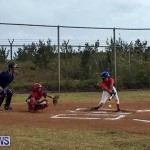 Baseball Bermuda, June 11 2017 (7)
