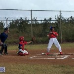 Baseball Bermuda, June 11 2017 (8)