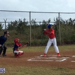 Baseball Bermuda, June 11 2017 (9)