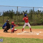 Baseball Bermuda, June 17 2017 (14)