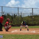 Baseball Bermuda, June 17 2017 (19)