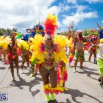 Bermuda Heroes Weekend Parade Of Bands BHW, June 19 2017_3007