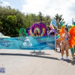 Bermuda Heroes Weekend Parade Of Bands BHW, June 19 2017_3101
