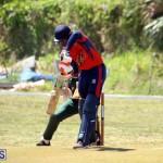 Cricket Bermuda June 7 2017 (1)