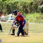 Cricket Bermuda June 7 2017 (17)