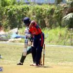 Cricket Bermuda June 7 2017 (18)