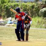 Cricket Bermuda June 7 2017 (19)