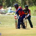 Cricket Bermuda June 7 2017 (3)
