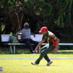 Cricket Bermuda June 7 2017 (8)