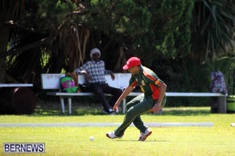 Cricket-Bermuda-June-7-2017-8