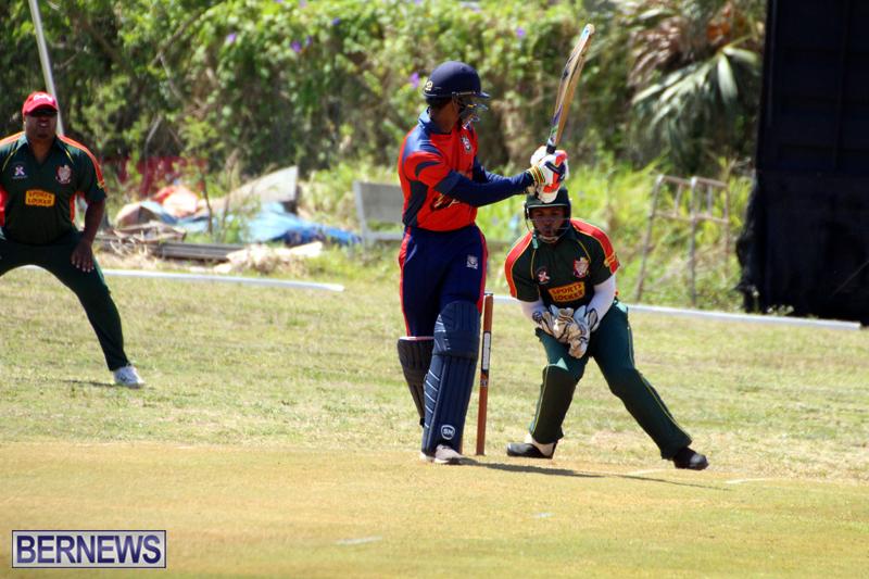 Cricket-Bermuda-June-7-2017-9