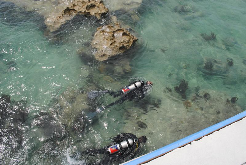 Dive Bermuda June 2017 (2)