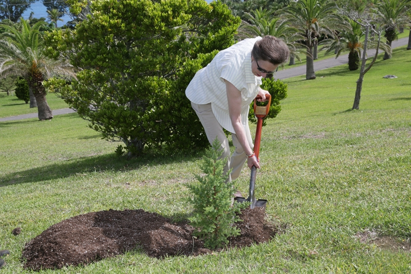 HRH Princess Royal's Tree planting (2)