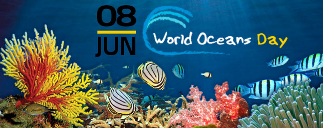 World Ocean Day Bermuda June 8 2017