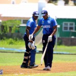 Cricket Bermuda July 8 2017 (1)