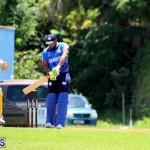 Cricket Bermuda July 8 2017 (15)
